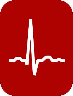 Biomedical Signal and Biosystems Analysis - EKG