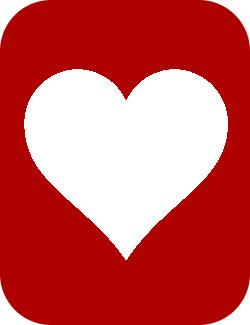 Tissue Engineering - Heart