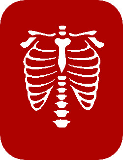 Medical Imaging - Ribcage Image