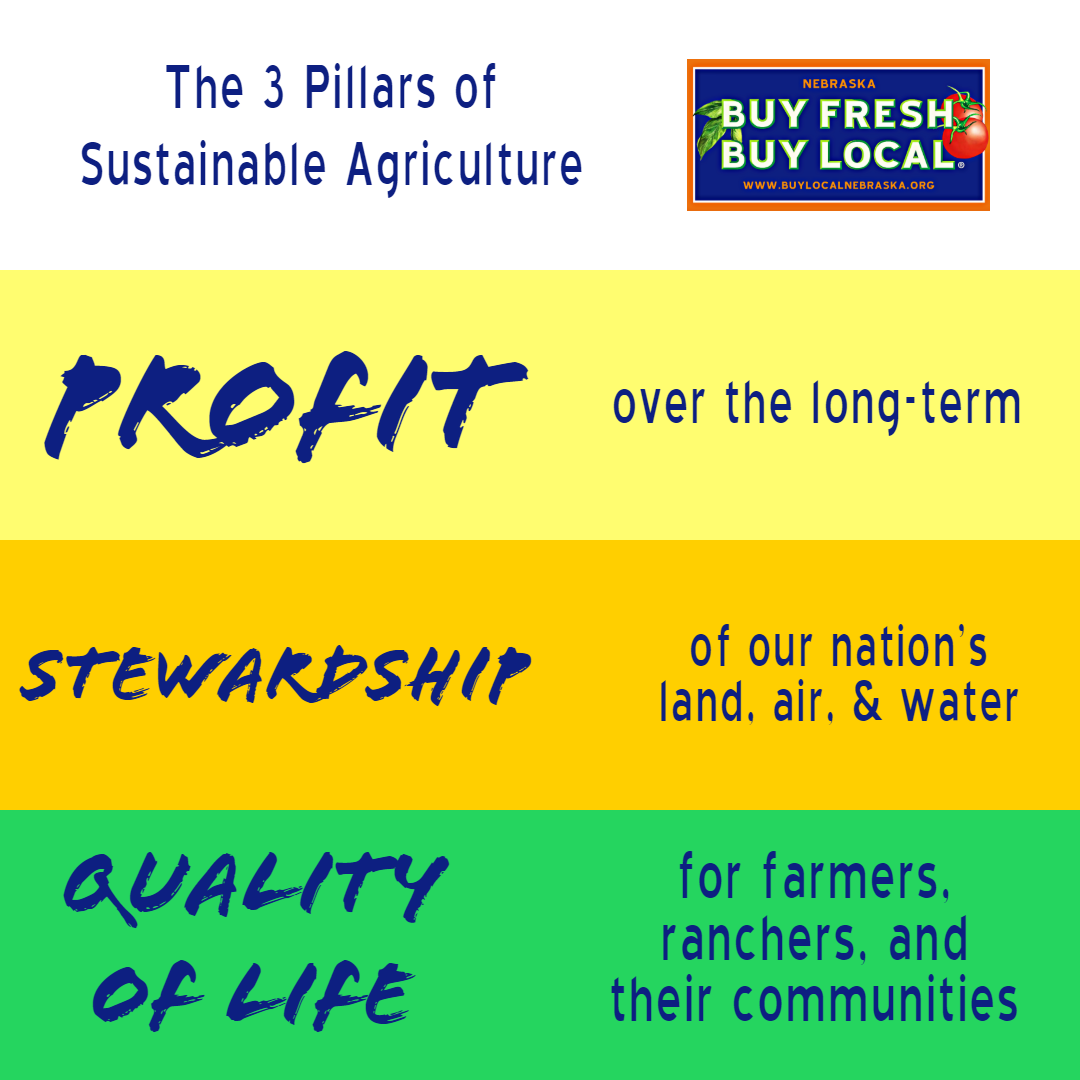 3 Pillars of Sustainability